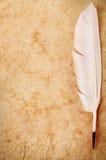 Biały dutki pióra zakończenie na rocznika starym papierowym tle Retro czerstwy Obraz Royalty Free