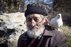 Biały dziad, Brodaci gołębie życzliwi i Zdjęcia Stock