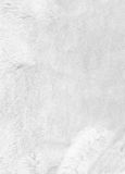 Biały futerkowy tło zbliżenie Zdjęcia Stock
