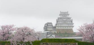 Biały Grodowy Himeji kasztel z czereśniowego okwitnięcia kwitnieniem Obrazy Royalty Free