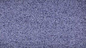 Biały hałas żadny korytkowy sygnał - Statyczni biali hałasu TV żadny sygnał tęsk wideo zdjęcie wideo