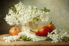 Biały hiacynt zdjęcia royalty free