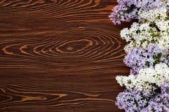 Biały i purpurowy bez na ciemnego brązu drewna tle Zdjęcie Stock