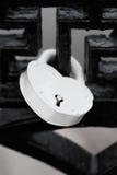 Biały kędziorek na czerń moscie Zdjęcia Royalty Free