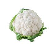 Biały Kalafior zdjęcia stock