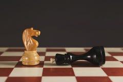 Biały koń dostawał zwycięstwo pod czarną królową obrazy royalty free
