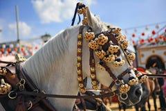 Biały koń w Seville jarmarku, Andalusia, Hiszpania Obrazy Stock