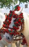 Biały koń w Seville jarmarku, Andalusia, Hiszpania Obrazy Royalty Free
