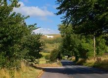 Biały koń Westbury Zdjęcie Stock