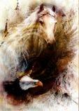 Biały koń z latającą orła pięknego obrazu ilustracją Zdjęcia Stock