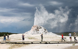 Biały kopuła gejzer, Yellowstone park narodowy Fotografia Stock