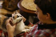 Biały kot na chłopiec podołku z uderzanie rękami zamyka w górę fotografii obrazy stock