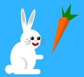 Biały królik Zdjęcie Stock