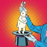 Biały królik w magik rękach ilustracji