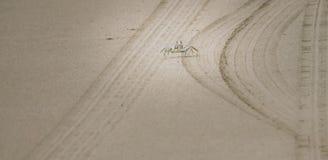 Bia?y kraba odprowadzenie na piasku, Kauai, Hawaje, usa zdjęcie royalty free