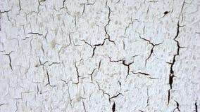 Biały krakingowy farby tekstury tło zdjęcie stock