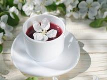Biały kubek herbata na drewnianym stole, jabłko kwitnie w tle Pogodny, boczny widok, fotografia royalty free