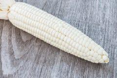 Biały kukurudza obrazy stock
