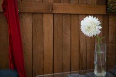 Biały kwiat w szklanej wazie na drewnianym tle obraz stock