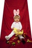 Biały mały królik i jego jajka Obraz Royalty Free