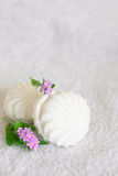Biały marshmallow i niezapominajka na białym tle Obrazy Stock