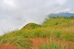 Biały mgła pławik zakrywać zielonej trawy górę obraz royalty free