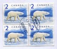 biały niedźwiadkowi kanadyjscy znaczki obrazy stock