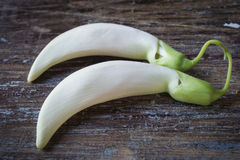 Biały nucić ptasi warzywo na starym drewnianym tle Fotografia Royalty Free