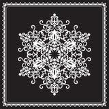 Biały płatek śniegu Fotografia Royalty Free