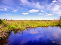 Biały Pamiątkowy natura teren zdjęcie stock