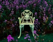 Biały piękny krzesło z kwitnącymi purpurami kwitnie przy tłem zdjęcia royalty free