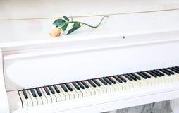 Biały pianino z piękną kolor żółty różą Obrazy Royalty Free