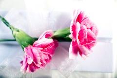 Biały prezenta pudełko z kwiatami Obrazy Royalty Free