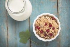 Biały puchar z kukurydzanymi zboża oatmeal płatkami fotografia royalty free