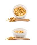 Biały ramekin wypełniający z kukurydzanymi nasionami obrazy stock