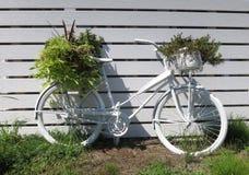Biały rower z roślinami Obrazy Royalty Free