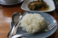 Biały ryż Obrazy Royalty Free