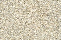 Biały sezamowego ziarna tło i textured obrazy royalty free