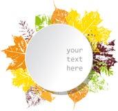 Biały sztandar z jesiennymi liśćmi Zdjęcie Royalty Free