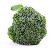 biały tło brokuły Fotografia Stock