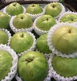 biały tło guavas Fotografia Stock