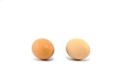 biały tło jajka Zdjęcie Royalty Free