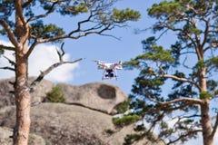 Biały trutnia latanie na drzewa tle obrazy stock