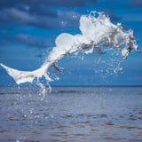 Biały watercolour pluśnięcie Zdjęcia Stock