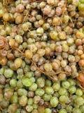 Biały winogrona Obraz Royalty Free