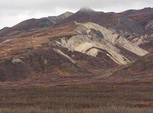 Biały zbocze w Alaskiej spadek wsi zdjęcia royalty free