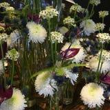 Biały zima kwiatu sen z chryzantemą, gwiazda Betlejem kwiat, Anturia, paproć, oset, piękny kwiatu przygotowania zdjęcie stock