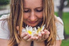 Białych kwiatów frangipani plumeria w żeńskich rękach Zdjęcie Stock