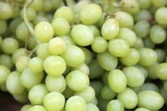 białych winogron Obraz Royalty Free