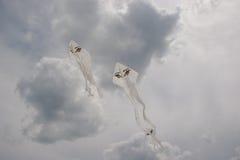 Białe ghosty kanie w chmurnym niebie Zdjęcia Stock